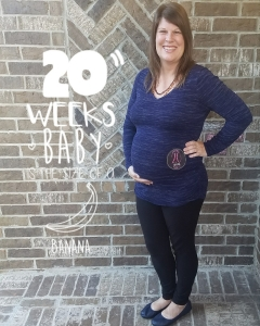 Read more about the article 20 Weeks